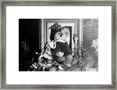 Stepping Out Black And White Framed Print by Camille Lopez