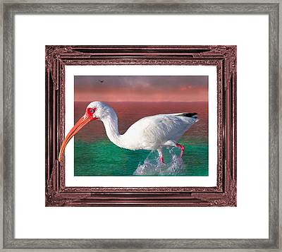 Stepping Out Framed Print by Betsy C Knapp