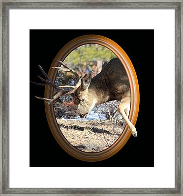Stepping Out Framed Print by Shane Bechler