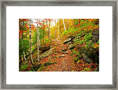 Framed Print featuring the photograph Stepping Stones by Bill Howard