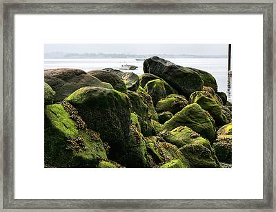 Stepping Stones Park Framed Print