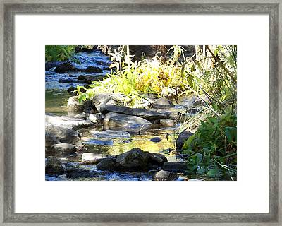 Stepping Stones Framed Print by Sheri Keith