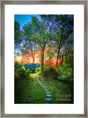 Stepping Stones To The Light Framed Print by Marvin Spates