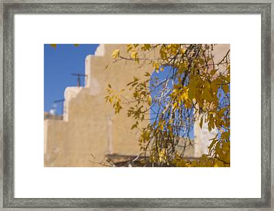 Steps And Fall Jerome Framed Print