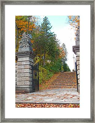 Steps And Stones Framed Print