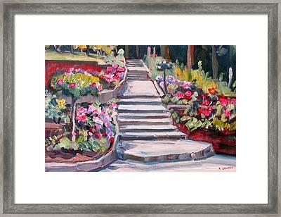 Steps In The Rose Garden Framed Print