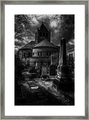 Steps Into The Past Framed Print by Lynn Palmer