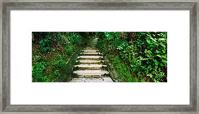 Steps Leading To A Lighthouse, Morro De Framed Print by Panoramic Images