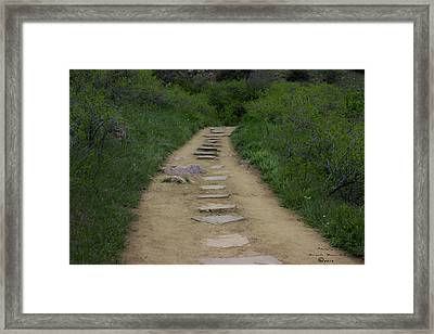 Steps Through Nature Framed Print by Missy Boone