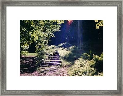 Steps To Madame Sherri Castle Framed Print by David Fiske