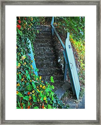 Framed Print featuring the photograph Steps To Somewhere by Connie Fox
