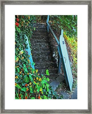 Steps To Somewhere Framed Print by Connie Fox