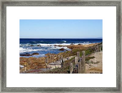 Steps To The Sea Framed Print by Barbara Snyder