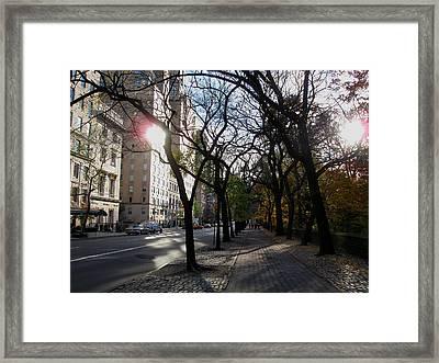 Stereo Sun Framed Print