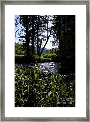 Sterline Blue  Framed Print by Tim Rice