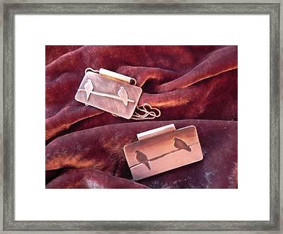Sterling Silver Bird Pendants Framed Print by Patricia  Tierney