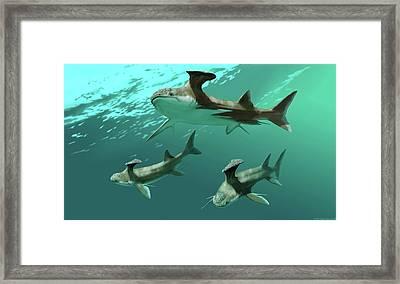 Stethacanthus Sharks Framed Print by Jaime Chirinos