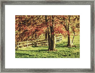 Stevens Lake Park Series 04 Framed Print by David Allen Pierson