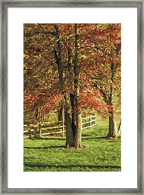 Stevens Lake Park Series 05 Framed Print by David Allen Pierson