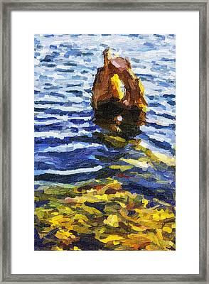 Stevens Lake Park Series 14 Framed Print by David Allen Pierson
