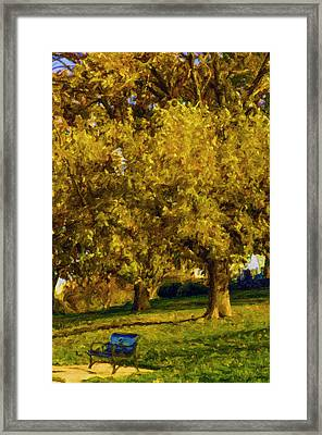 Stevens Lake Parkseries 02 Framed Print by David Allen Pierson