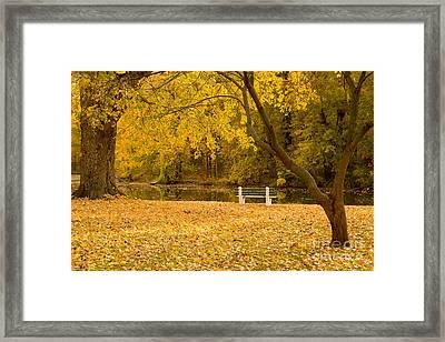 Stewart Park Ithaca Framed Print