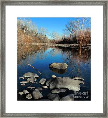 Stick In The Mud Framed Print by David Taylor
