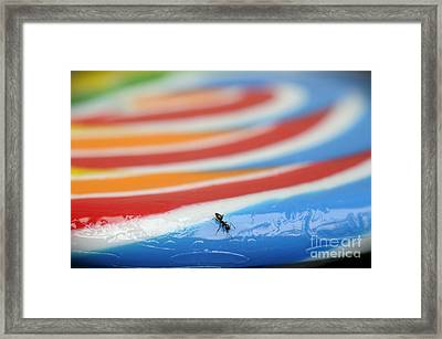Sticky Rings Of Saturn Framed Print by Luke Moore