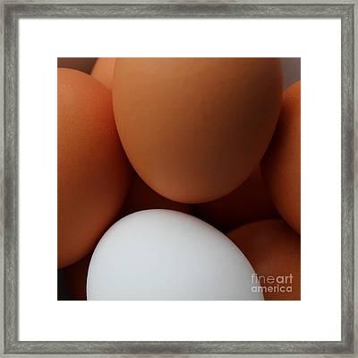Still A Good Egg Framed Print by Barbara Griffin