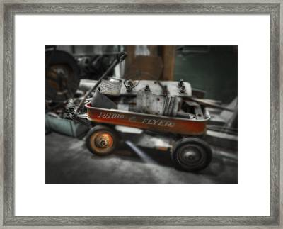 Still Flying Framed Print by Donald Schwartz