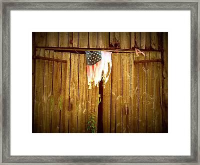 Still Hangin Framed Print by Trish Clark