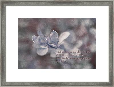 Still I Rise Framed Print by Maria Angelica Maira