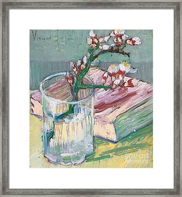 Still Life    A Flowering Almond Branch Framed Print