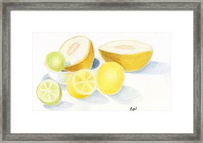 Still Life - Citrus Fruit With Melons Framed Print by Bav Patel