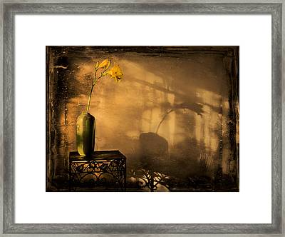Still Life - Day Lily Framed Print by Theresa Tahara