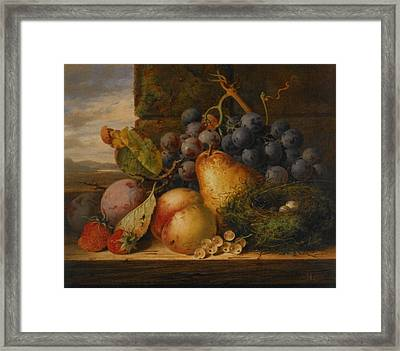 Still Life Grapes Pares Birds Nest Framed Print by Edward Ladell