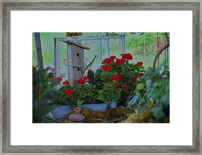 Still Life Framed Print by Helen Carson
