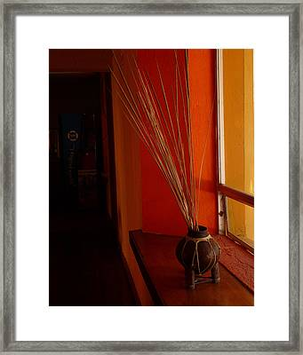 Framed Print featuring the photograph Still Life In Baja by Alan Socolik