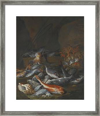 Still Life Of Assorted Fish Framed Print by Celestial Images