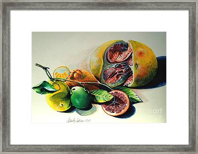 Still Life Of Citrus Framed Print by Alessandra Andrisani
