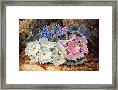 Still Life Of Flowers Framed Print by Oliver Clare