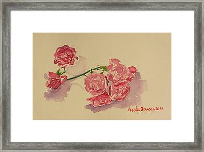 Still Life Roses Framed Print by Geeta Biswas