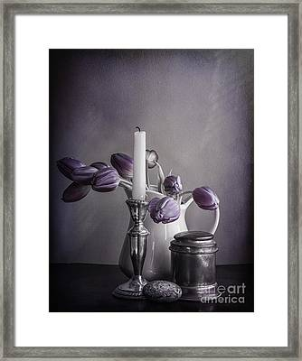 Still Life Study In Purple Framed Print by Terry Rowe