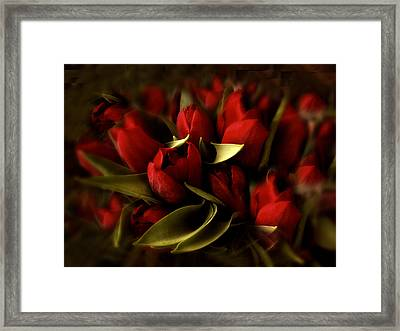 Still Life Tulips Framed Print by Jessica Jenney