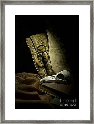 Still Life With A Bird Skull Framed Print