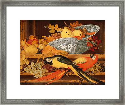 Still Life With Fruit And Macaws, 1622 Framed Print by Balthasar van der Ast