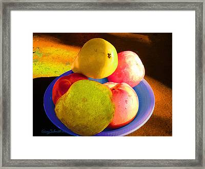 Still Life With Fruit Framed Print by Ginny Schmidt
