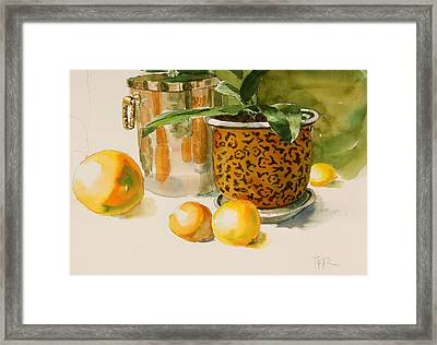 Still Life With Lemons And Potted Plant Framed Print by Pablo Rivera
