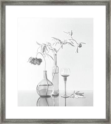 Still Life With Peonies Framed Print