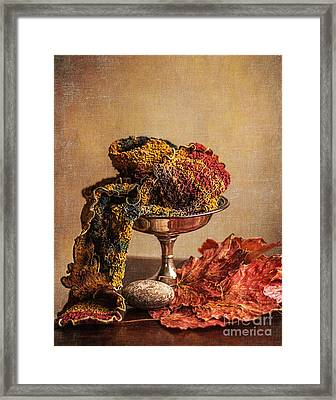 Still Life With Scarf Framed Print by Terry Rowe
